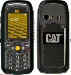 cat-b25